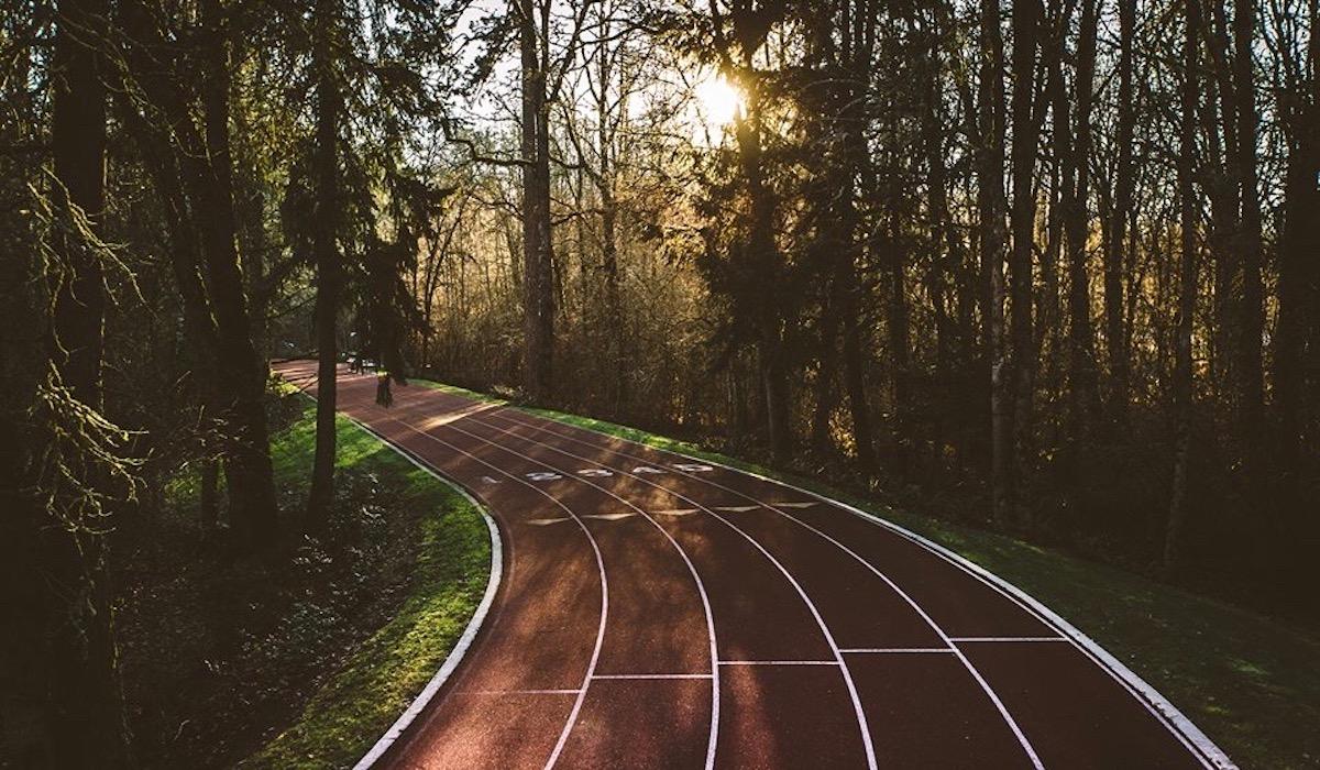 Nike running track in Oregon trees